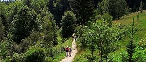 Zajęcia z okazji Międzynarodowego Dnia Lasów